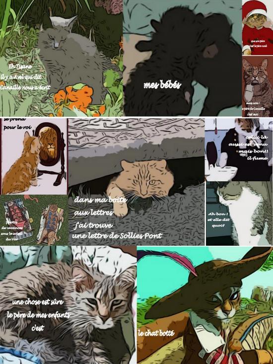 bande dessinée chat