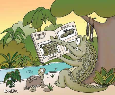 blague-crocodile-1.jpg