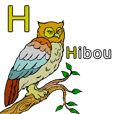 h-comme-hibou.png