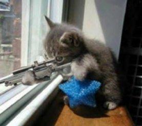 zeladatouch-1118679419-sniper.jpg